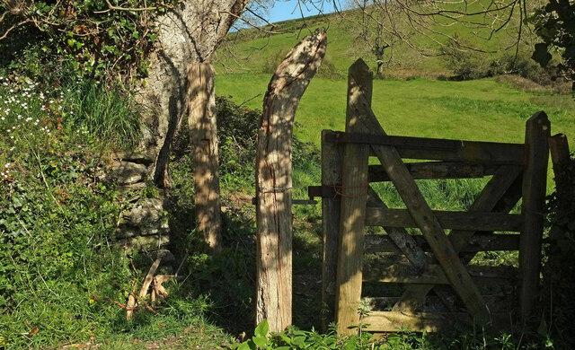 Gate, Brownstone