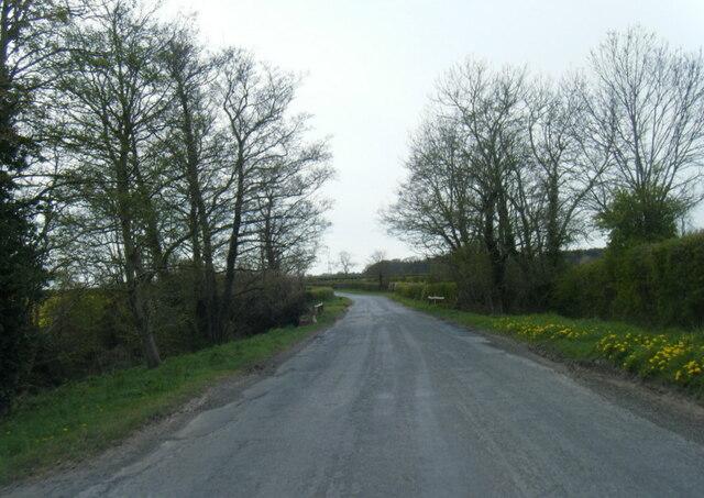 Lane at Ranbeck near Buttercrambe