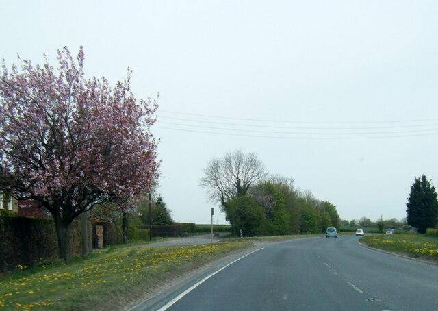 A1079 at Moorfield Farm