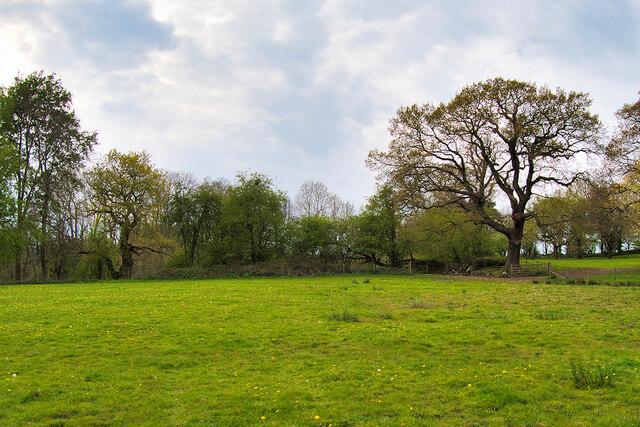 Mobberley Field