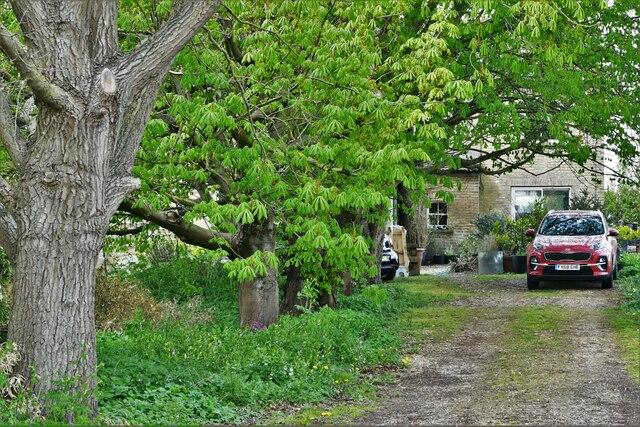 Southery,  Decoy Farm: The farmhouse