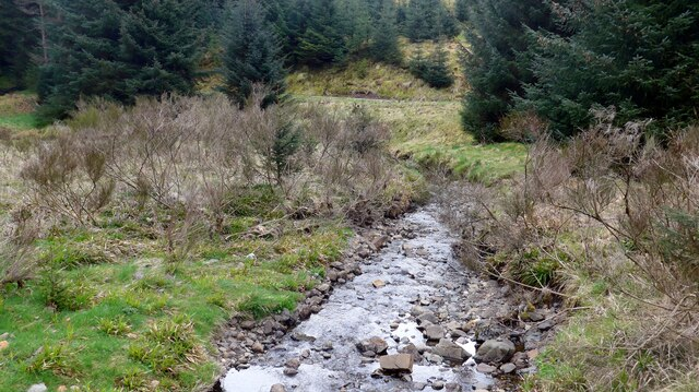 The Bin Burn in the Carron Valley Forest