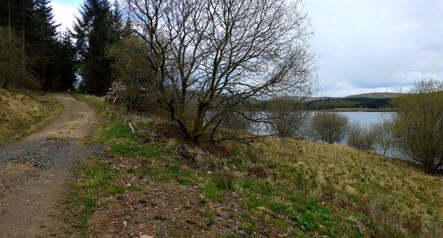 Track beside the Carron Valley Reservoir