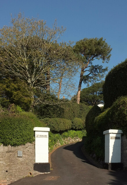 Trees and gate piers, Middle Warberry Road