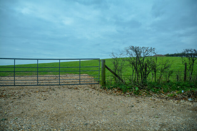 Newchurch : Grassy Field & Gate