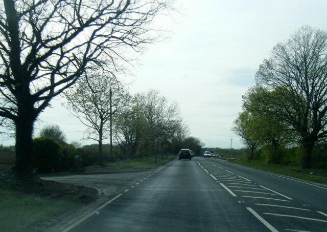 A63 at Pollums House Farm entrance