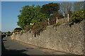 SX9264 : Wall, Middle Warberry Road by Derek Harper