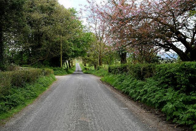 Reaghan Road, Altoghal