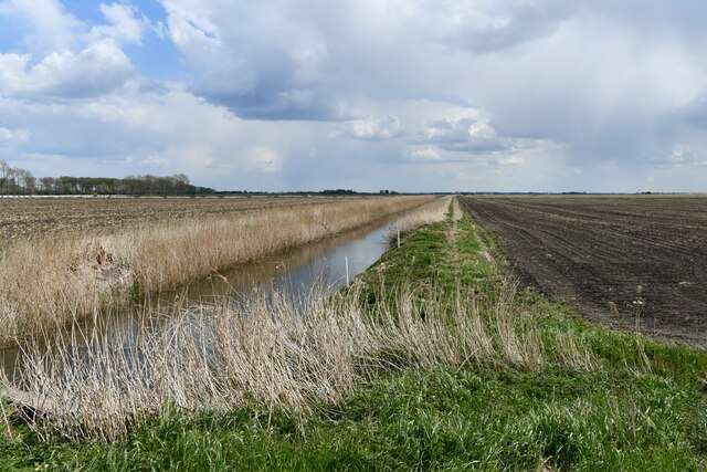 Little Ouse, White House Road: Drainage channel and surrounding field