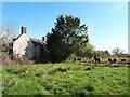 SU0788 : Derelict farmnouse, Parkgate Farm by Vieve Forward