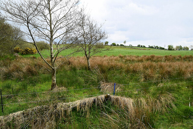 Rushy ground, Legnabraid