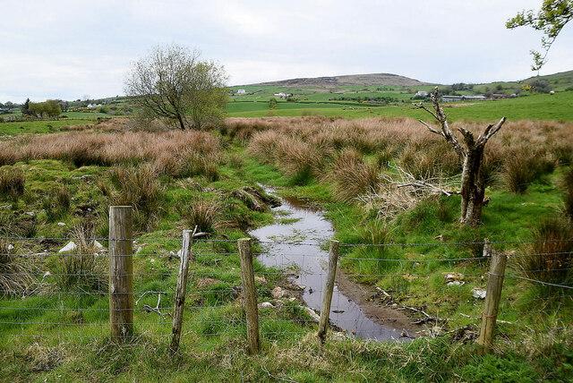 Wet ground, Legnabraid