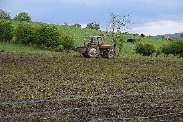 Tractor in field, Legnabraid by Kenneth  Allen