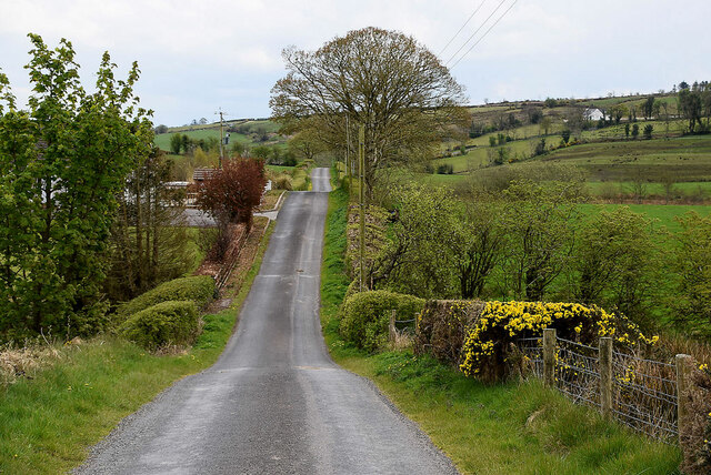 Reaghan Road