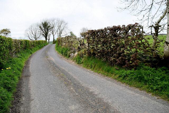 Narrow between the hedges, Ballykeel