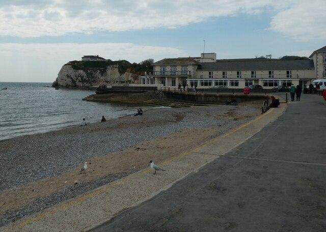 Freshwater Bay, early May 2021 (b)