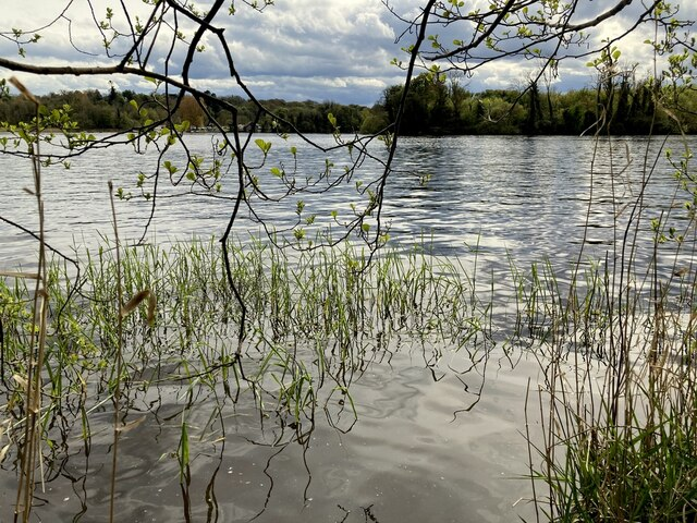 Inish Beg or Toms Island, Lough Erne