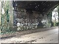 SP2874 : Anti-HS2 graffiti, Crackley Lane by Robin Stott