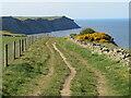 NZ9407 : Cleveland Way near Robin Hood's Bay by Malc McDonald