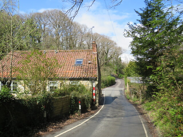 Glen Esk Road, near Whitby