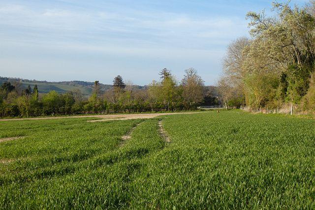 Farmland, Sulham