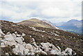 NY1215 : Heather and boulders on Ennerdale slope of Great Borne by Trevor Littlewood