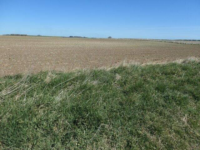 Farmland, North Cotes