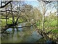 TM2280 : Upstream from the Needham footbridge by Adrian S Pye