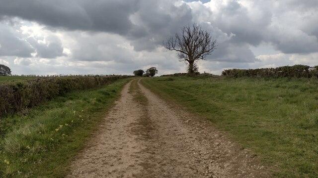 Bridleway heading towards Newbarn Farm