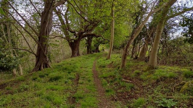 Path to Park Farm