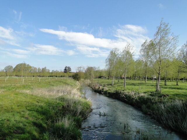 Upstream from Roaring Arch Bridge