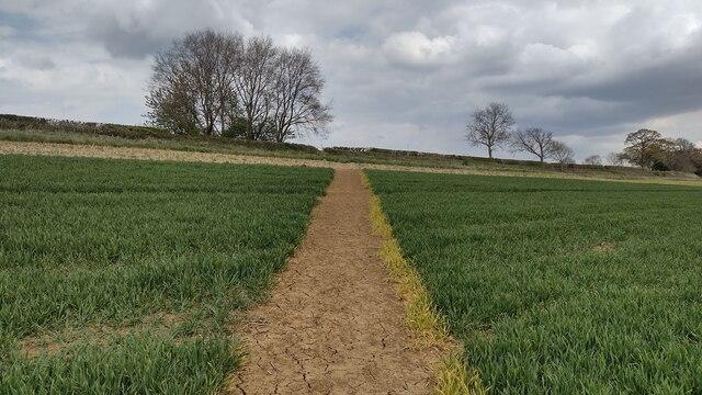 Path nearing the road to Worton Edge