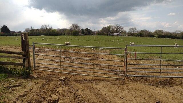 Path nearing Ledwell