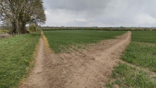 Bridleway to Duns Tew