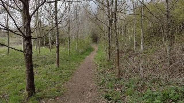 Path heading to Worton Road
