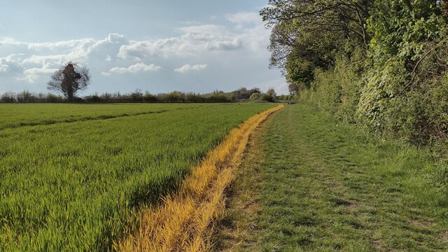 Bridleway heading to the B4030