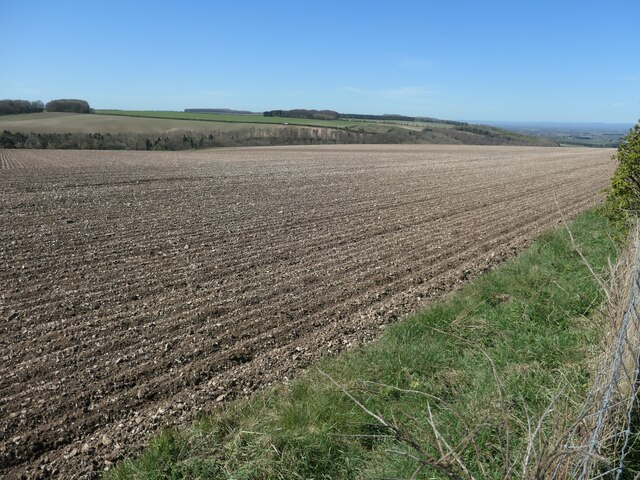 Chalky field, Sked Dale Top
