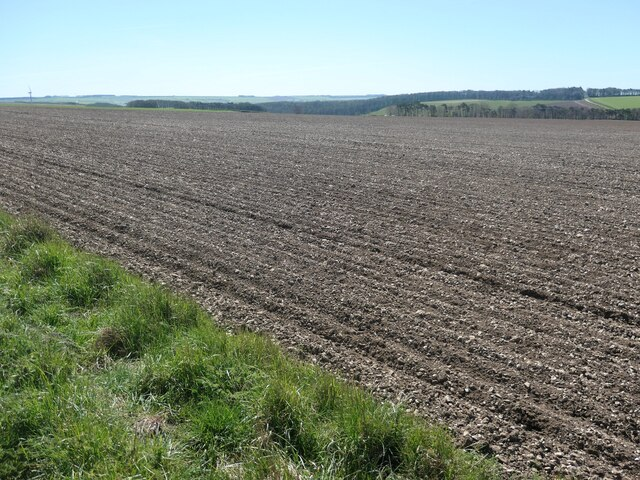 Chalky field, south-west side of Simon Howe