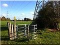 SP3484 : Redundant kissing gate by Alan Paxton