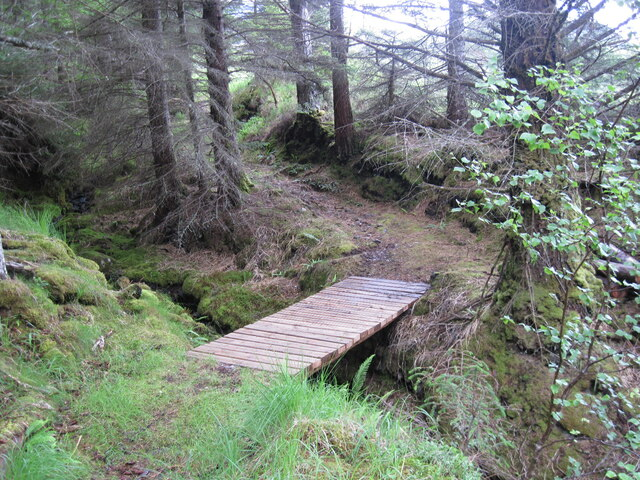 Bridge across small burn in Achnashellach Forest