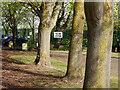 SP4874 : Entrance to Henry Hinde Junior School, Bilton by Stephen McKay