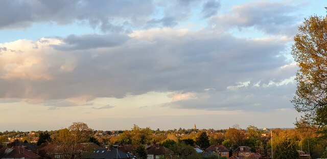 Evening View over Enfield