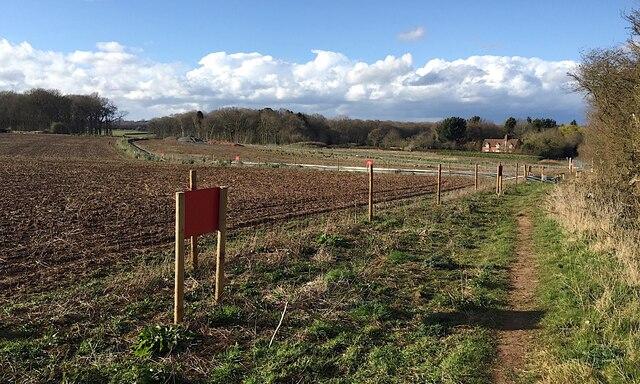 HS2 enabling works, Crackley-Burton Green, March 2021 (9))