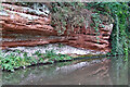 SO8275 : Early Triassic sandstone of the Kidderminster Formation  by Roger  Kidd