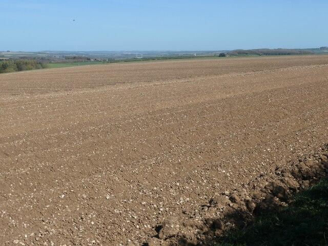 Bare field, Helperthorpe Moor
