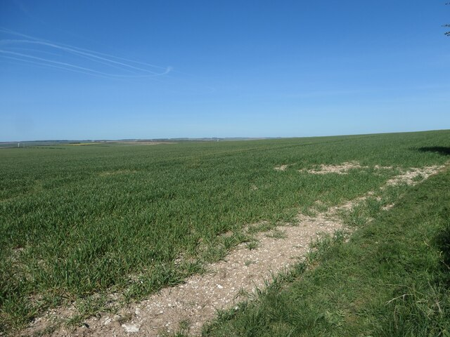 Cereals in chalky soil, High Field