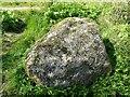 NS3278 : A swirly rock by Richard Sutcliffe