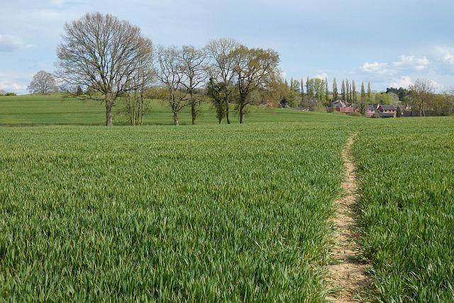Farmland, Cold Ash