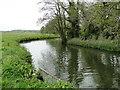 TM3390 : River Waveney upstream from the footbridge by Adrian S Pye