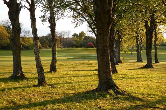 Golf course, Harpsden